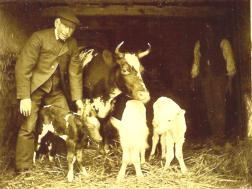 Sowood Farm Bennet Brook and triplets